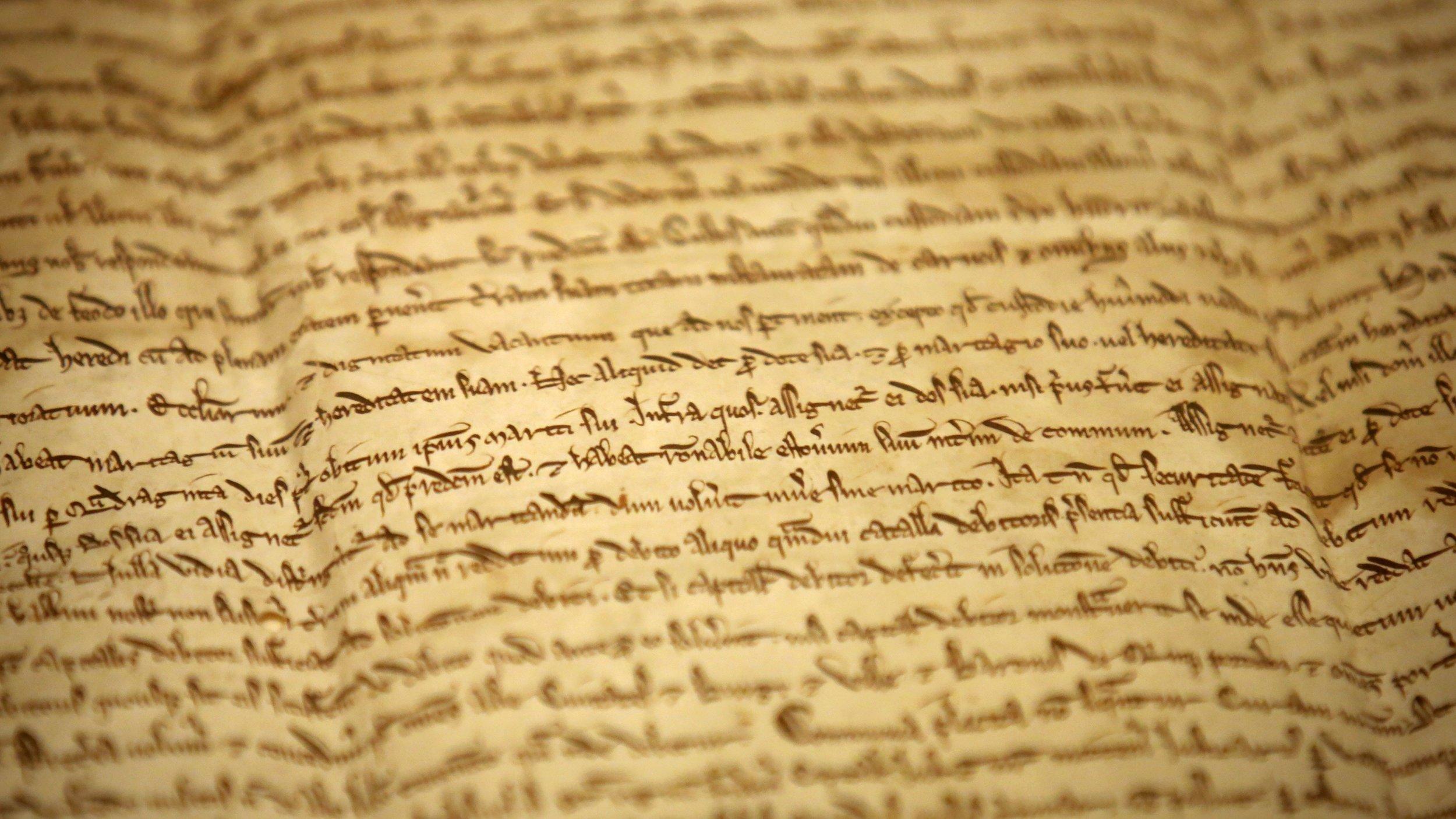 a close up view of the Magna Carta