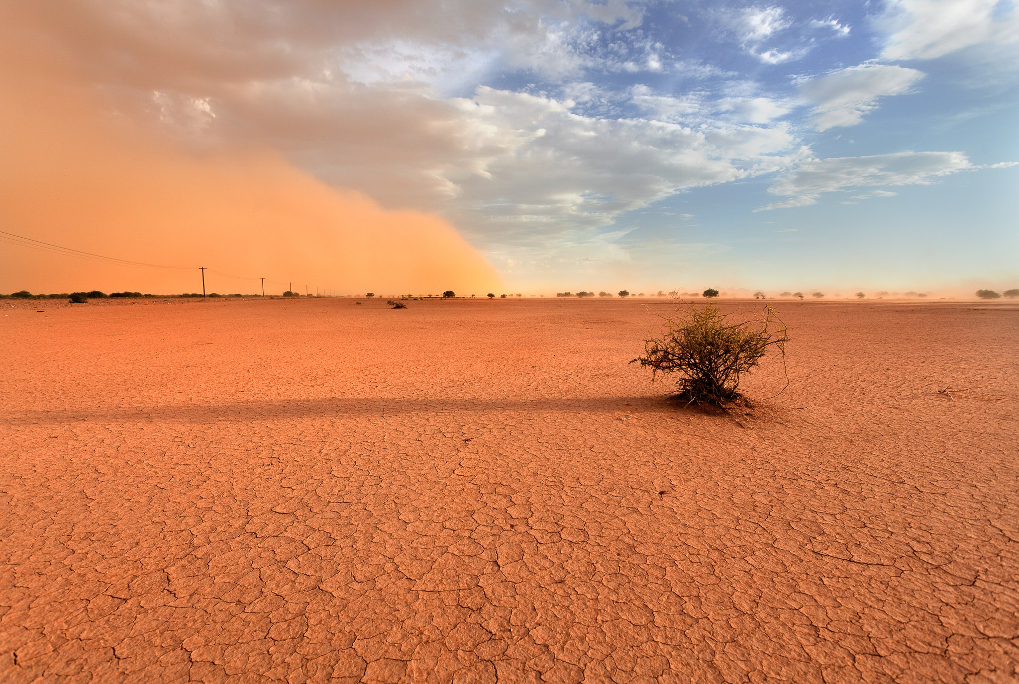 a desert wasteland in Phoenix, Arizona, United States
