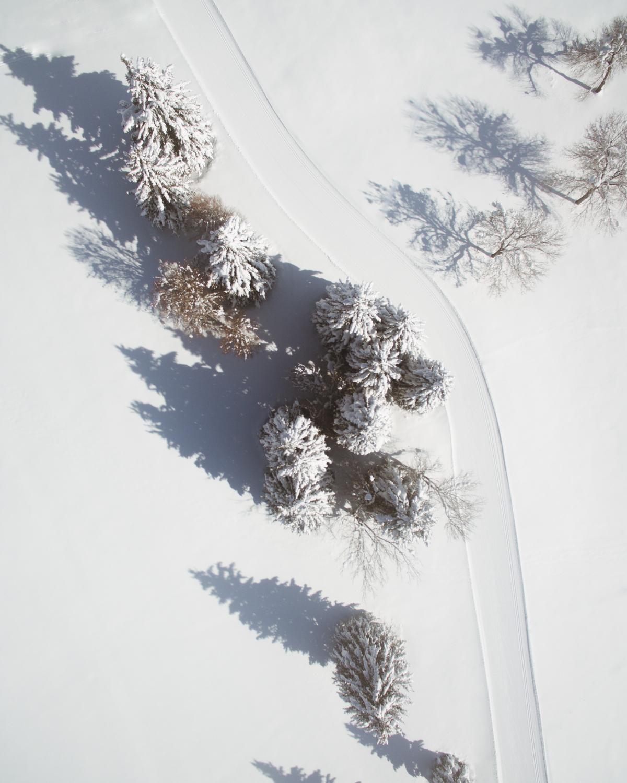 winterdrone