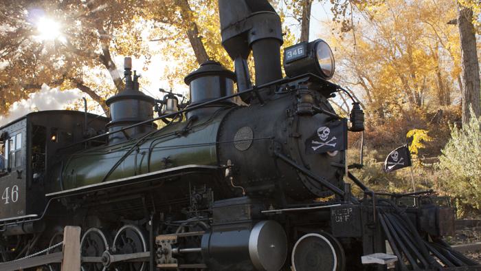 TRICK or TREAT Train!