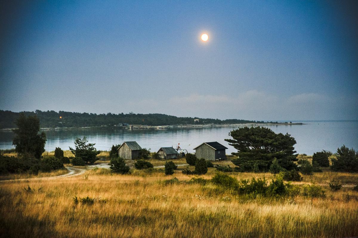 Gotland_2013_MG_1690_fix.jpg