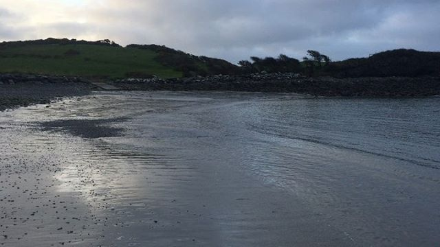 Is there any better way to begin the day? . . . . . #calmafterthestorm #colliesofinstagram #morningmeditation #morningmotivation #startthedayright #earlybird #westcork #rescuecollies #collies #crewebay #wildatlanticway #coastal #coastalliving #seashore #sea #beach #tide #lowtide #schull