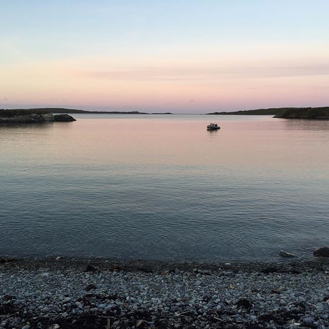 Good morning from Crewe Bay and a pretty fine morning it is. . . . . . #coastalliving #colliesofinstagram #morningmeditation #morningmotivation #morningwalkies #morningwalk #earlybird #earlystart #startthedayright #schull #rescuecollies #wildatlanticway #westcork #seashore #sunrise #startoftheday #crewebay