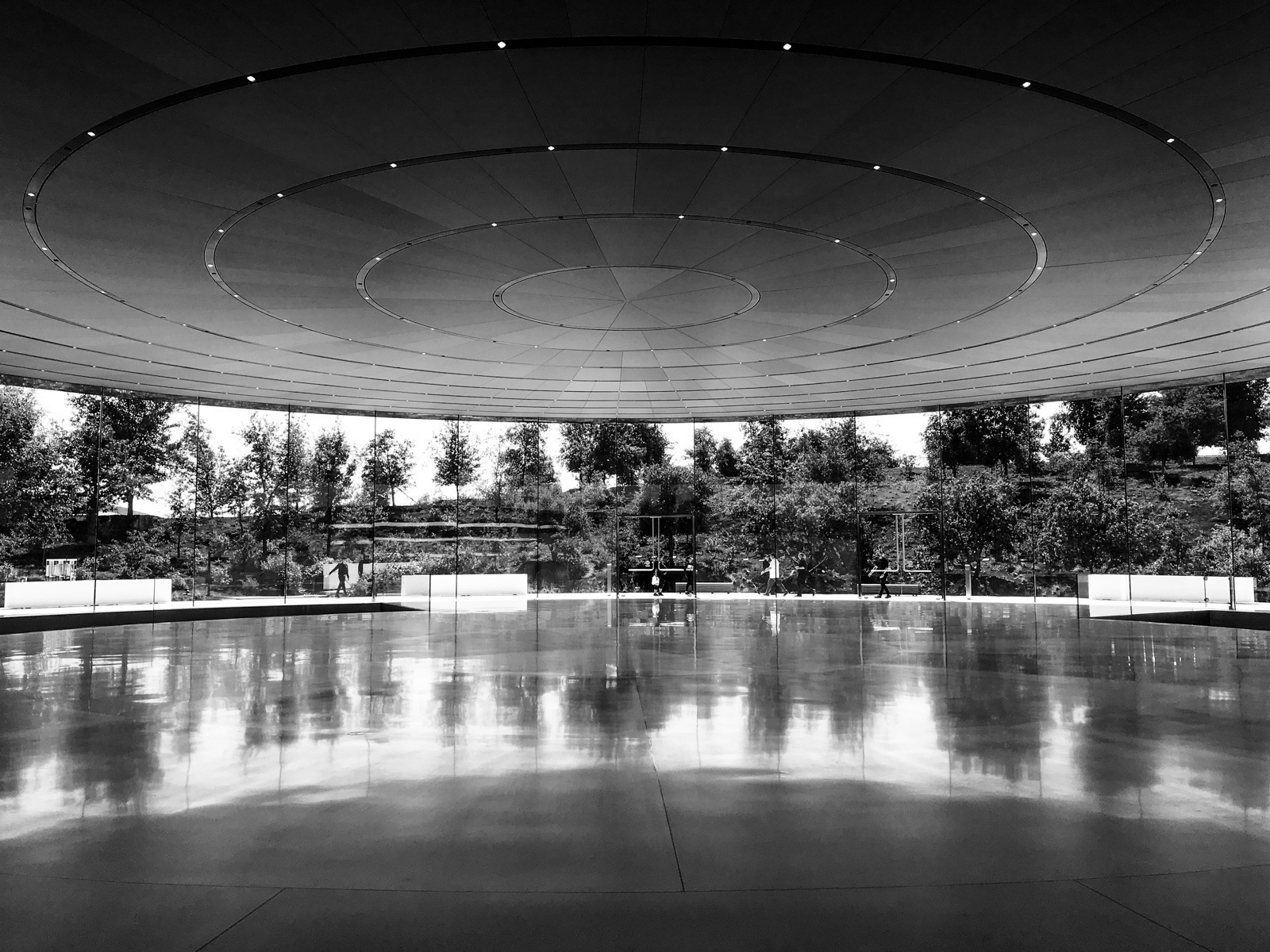 large_apple-steve-jobs-theater-14.jpg
