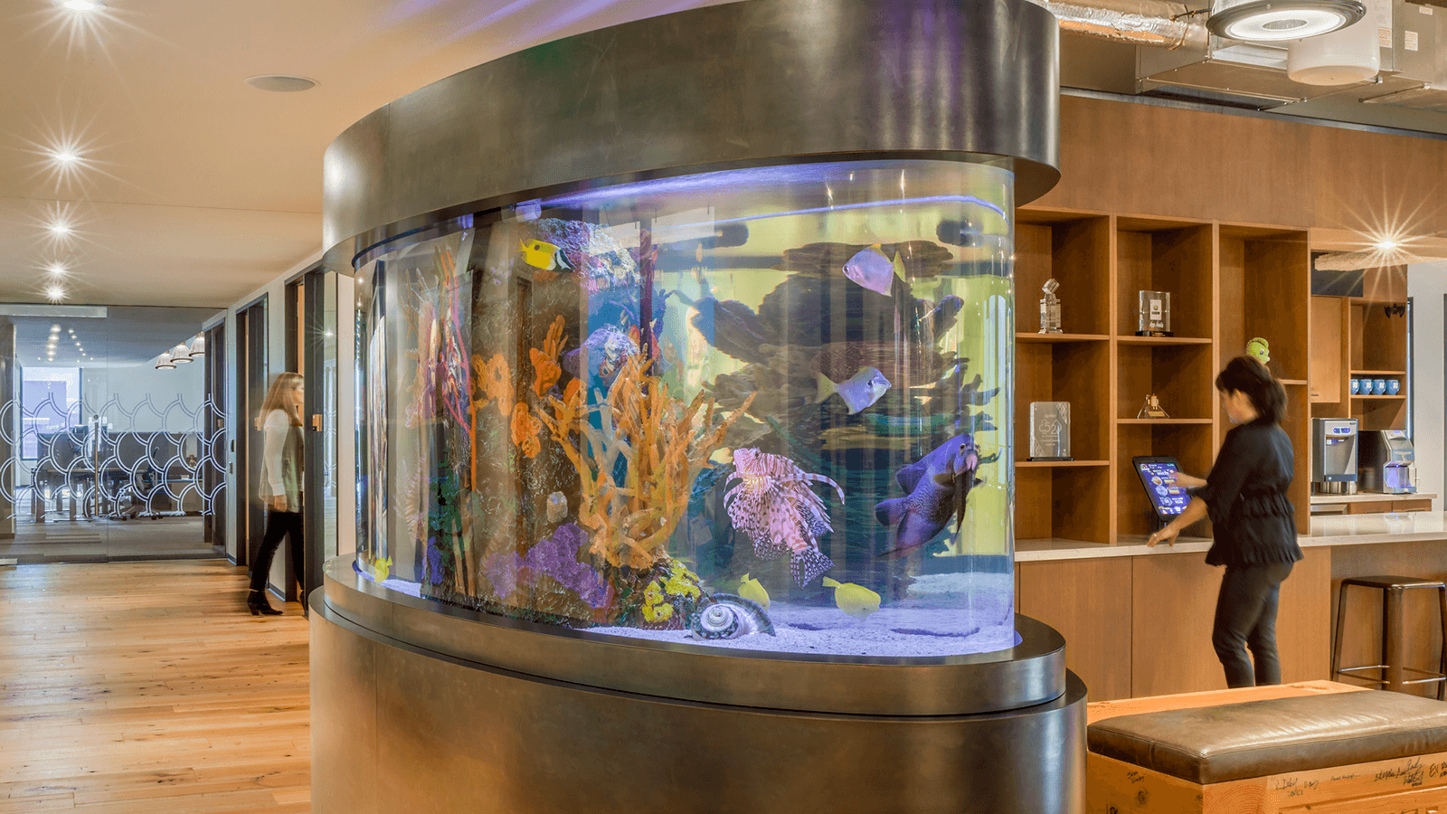 big-fish-games-fish-tank.png