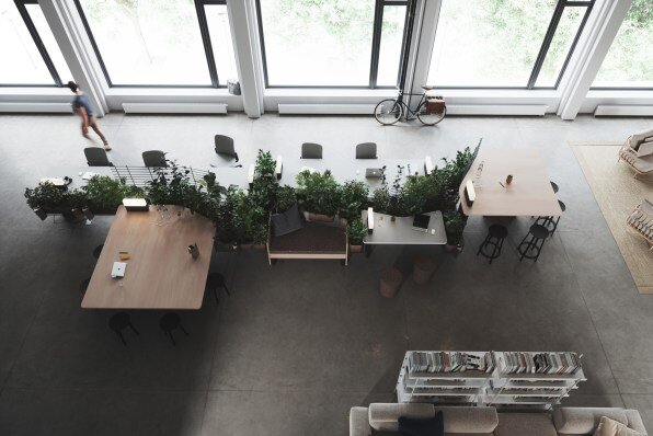 2-biophilic-design-for-office-spaces.jpg
