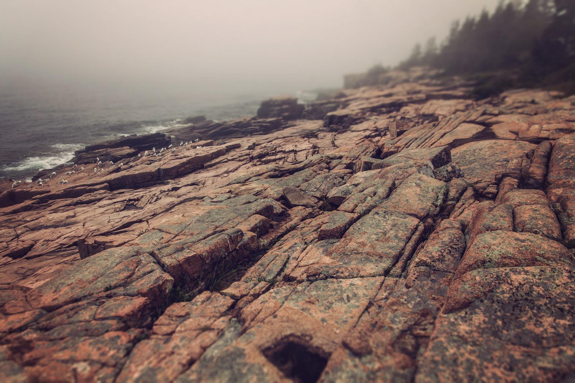 AcadiaFoggyCliffs_03.2-TS.jpg