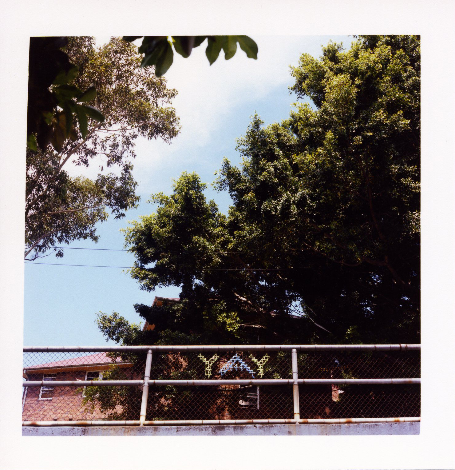 Kodak 400VC - Europe+Portland #3.jpg