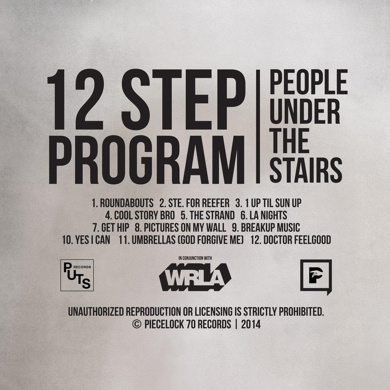12-Step-Program-Back-Cover-FINAL.jpg