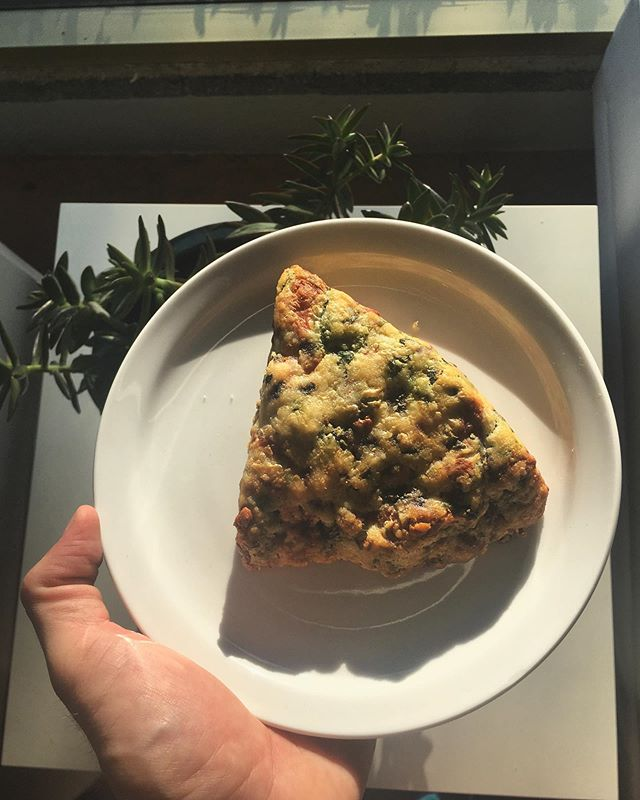 i'm not saying we'll have these spinach, swiss, and mushroom scones forever but i AM saying they ARE gluten free, so if that's gives you solace, take it! also take a scone! we're open til 3! . . . . #tucsoncoffee #pastry #localpastry #housemadepastries #tucson #tucsonaz #localaz #eatlocal #gf #glutenfree #scone #coffeeshop #cafe #uofa