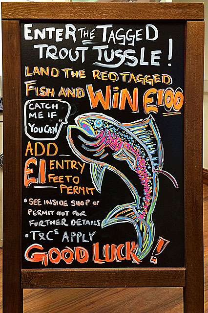 (Above) After the capture of the Blue Trout last week earning Tim Nickel £60 in cash, another fish has been stocked and this time it is worth £100.00! Just add £1 to your permit to enter the Tagged Trout Tussle.