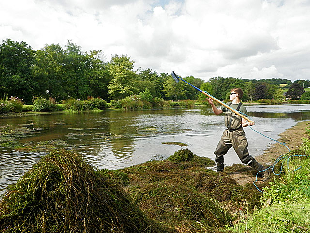 clearing weed exe valley lake