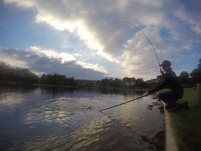 As the sun sets Toby concludes a successful practice session - catching in 7 different locations around the newly refurbished Anchor Lake.