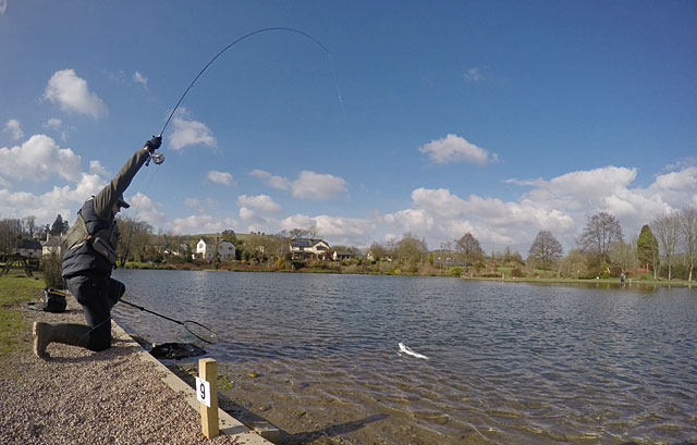 A last gasp Trout for Rob Grisley fishing Peg 9 in the afternoon