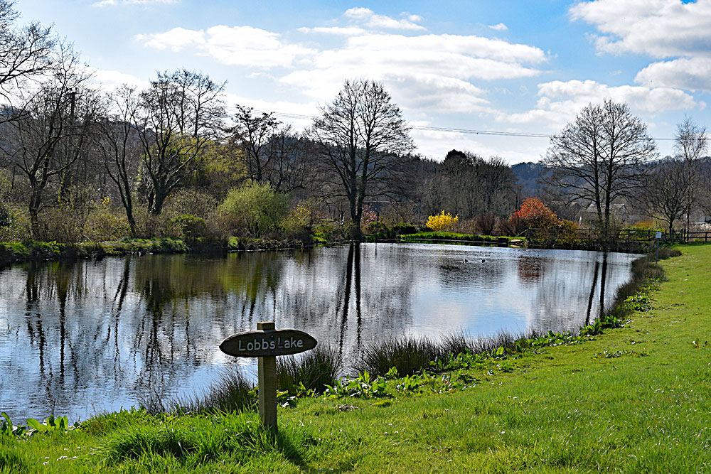 Lobbs Lake all ready to re-open to families on Monday 1st April 2019