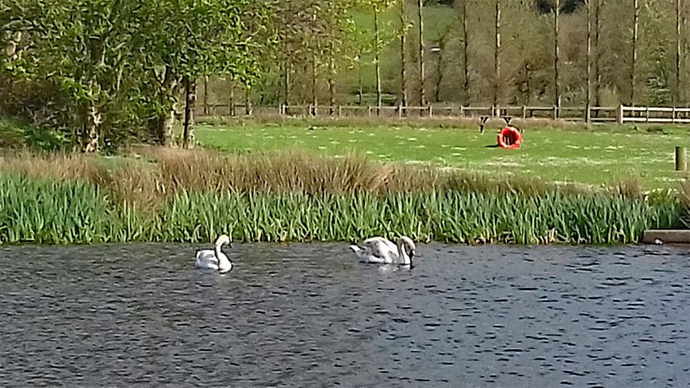 Anchor Lakes new visitors enjoying the sunshine