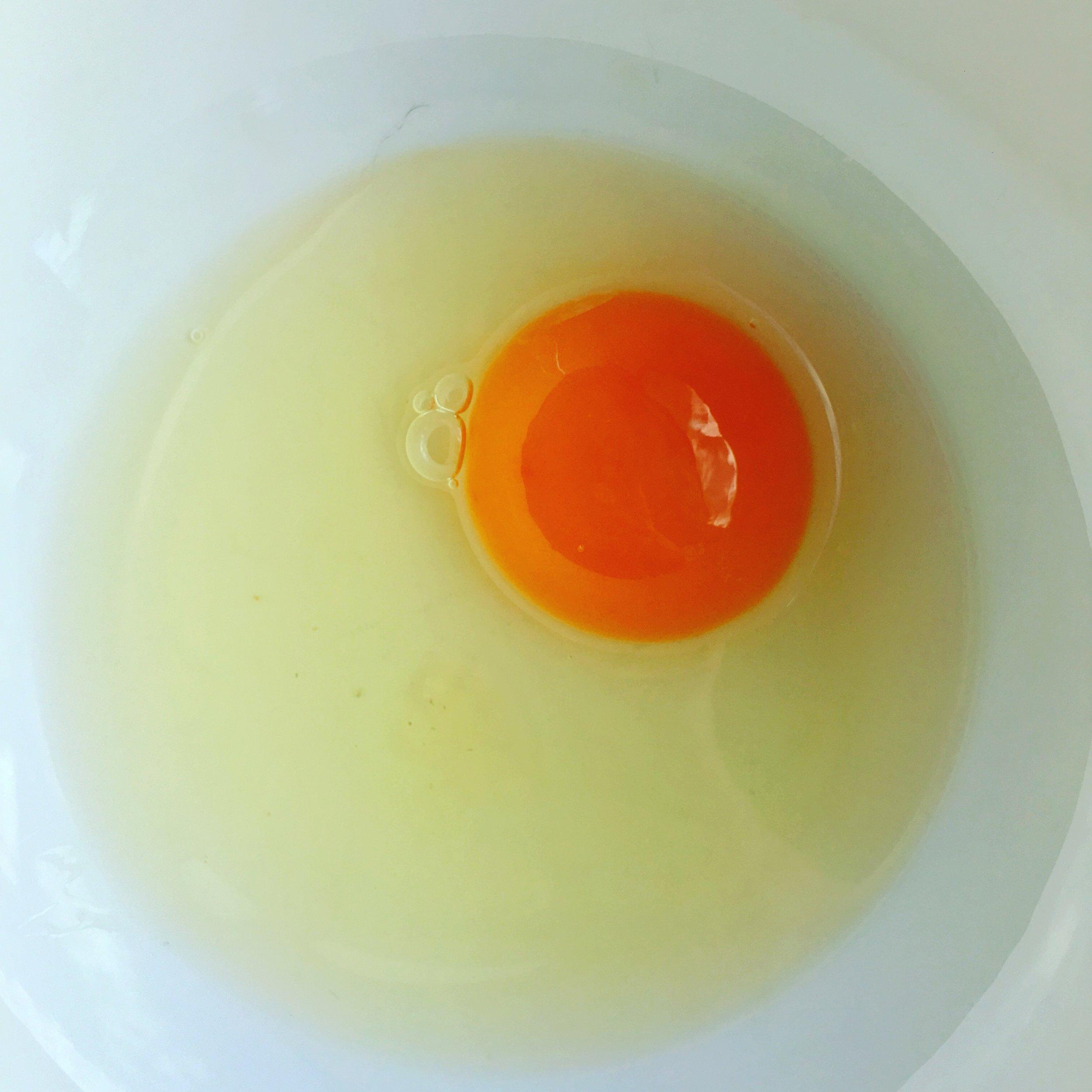 Yolkporn