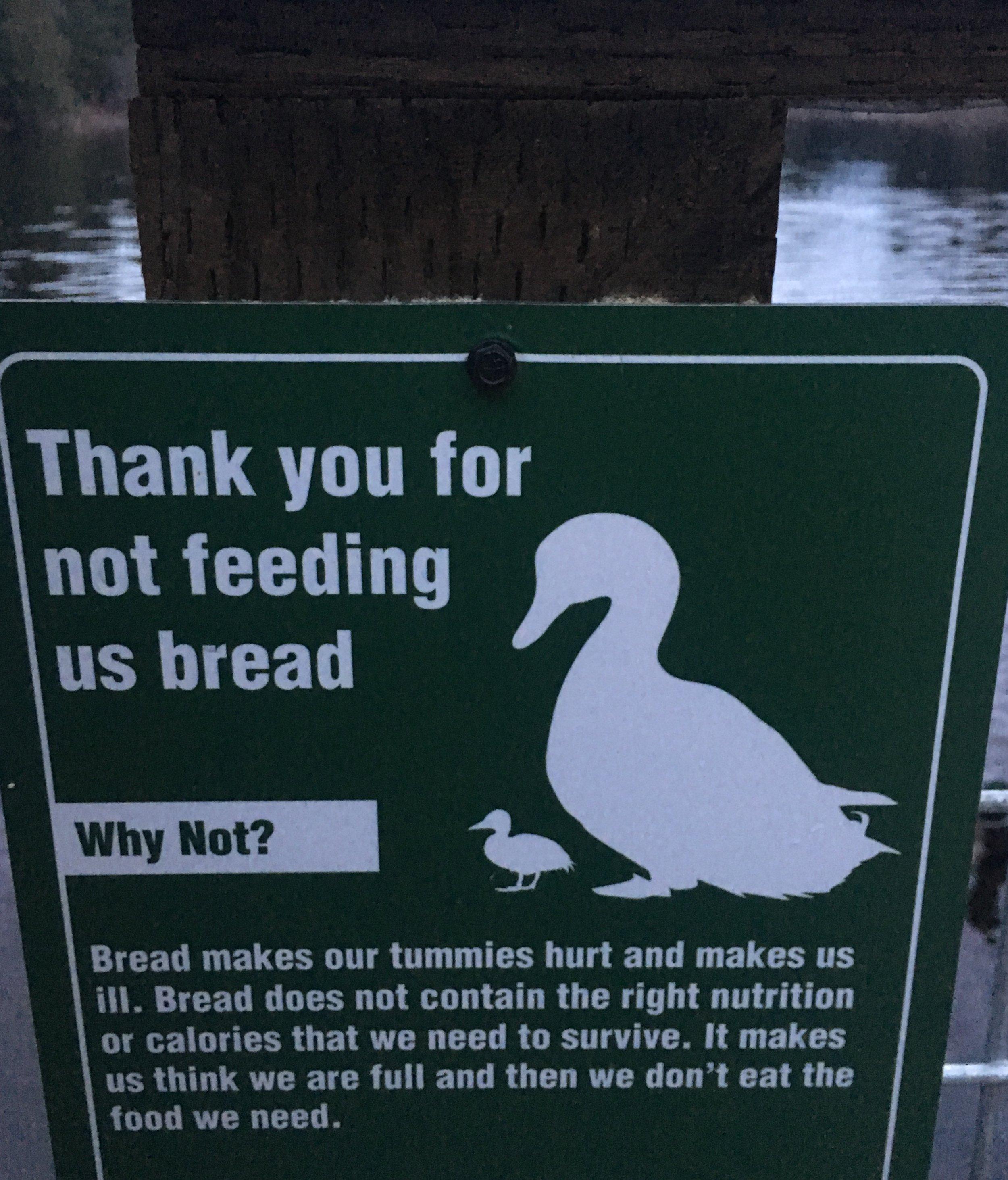 duckdiet