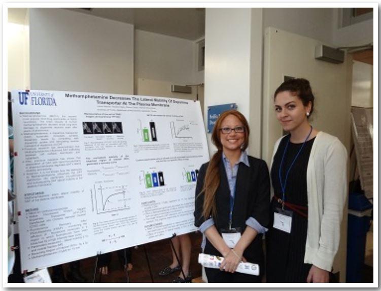Laura Villarroel and Paran Davari   Methamphetamine Decreases The Lateral Mobility of Dopamine Transporter At The Plasma Membrane