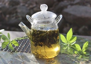 Jiaogulan Tea Health Benefits
