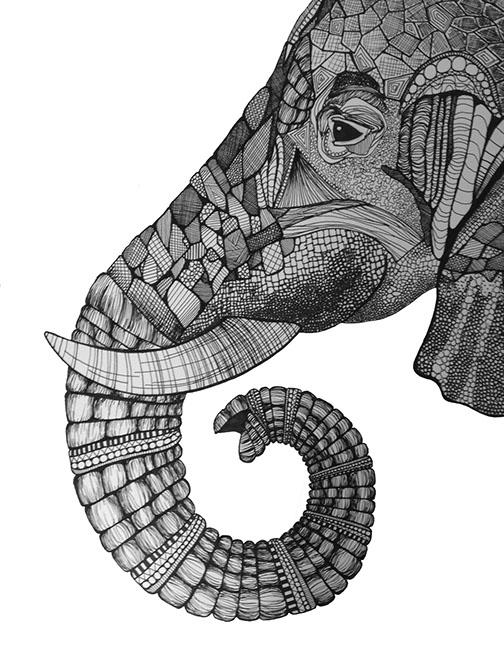elephanttt.jpg