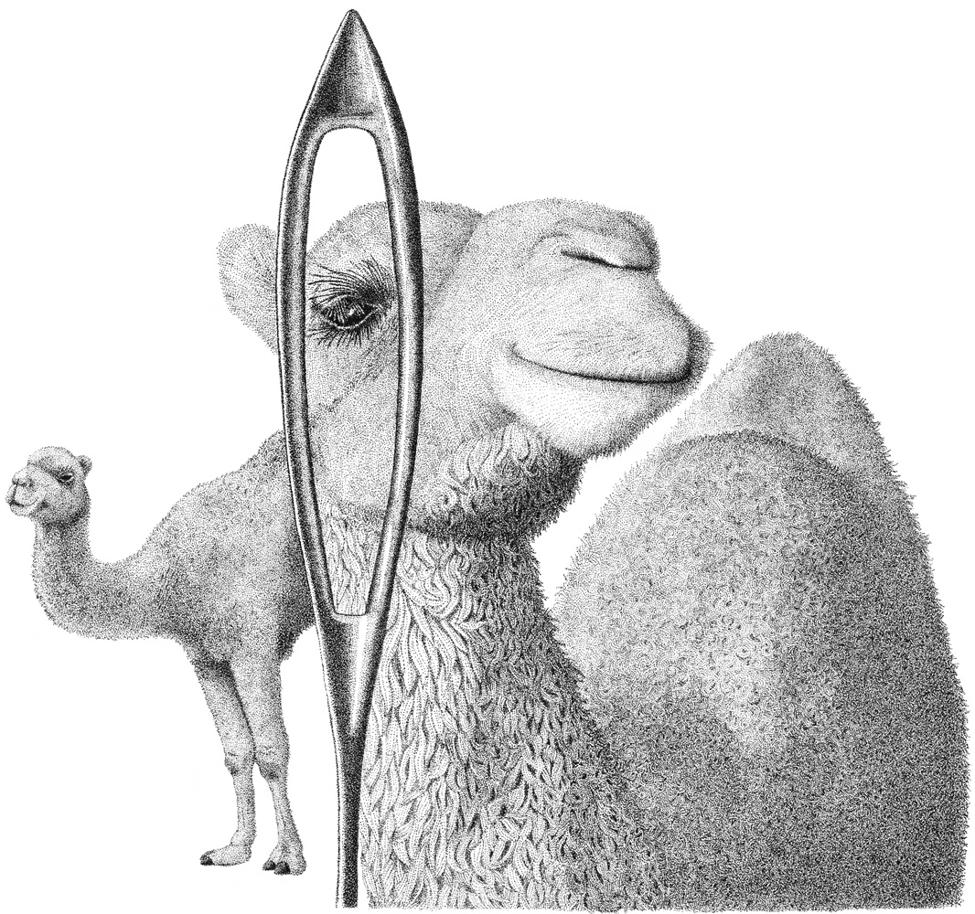 Camels Eye 2.jpg