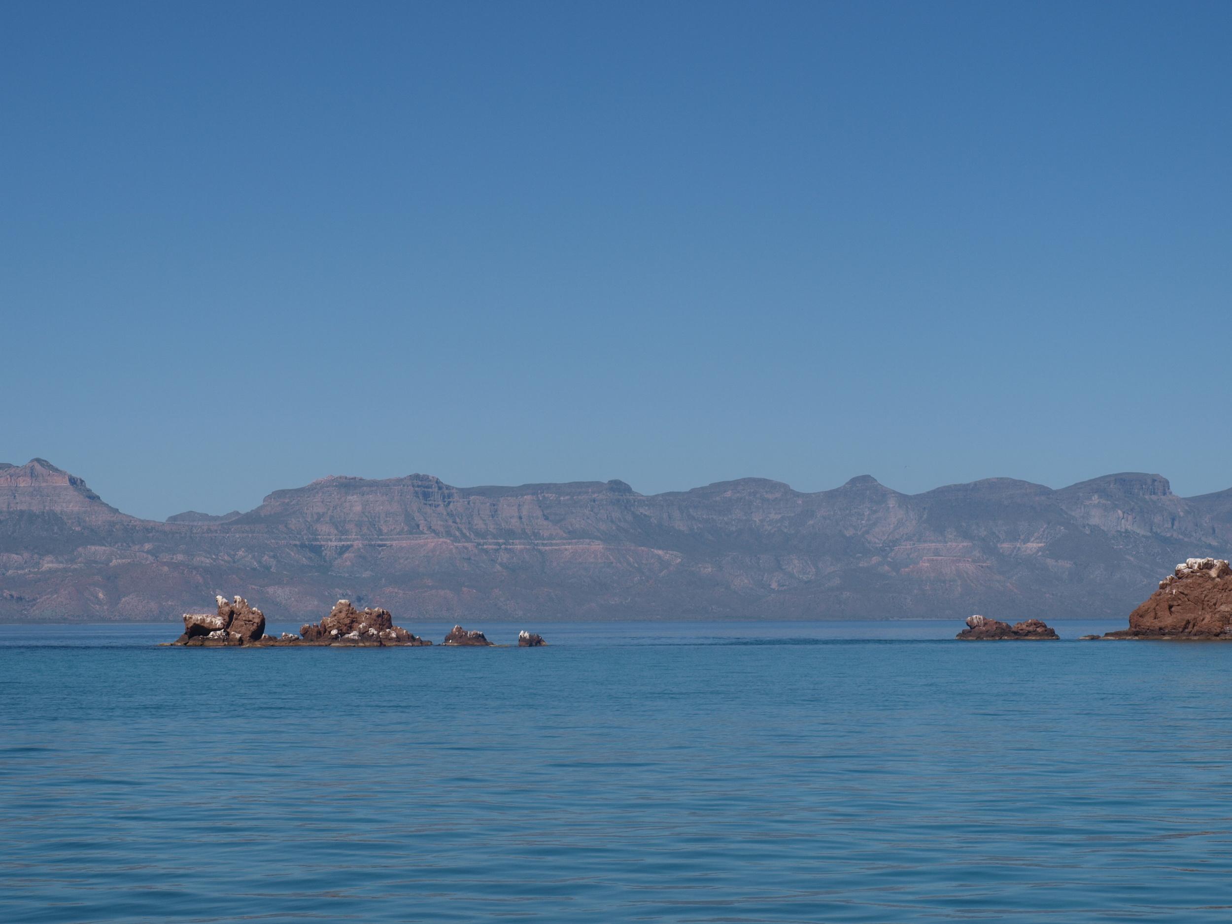 """Sea of Cortes, the """"aquarium of the world"""""""