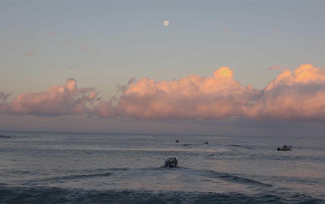 """Proceso - """"Patrimonio"""", documental sobre la lucha de los pescadores de Punta Lobos"""