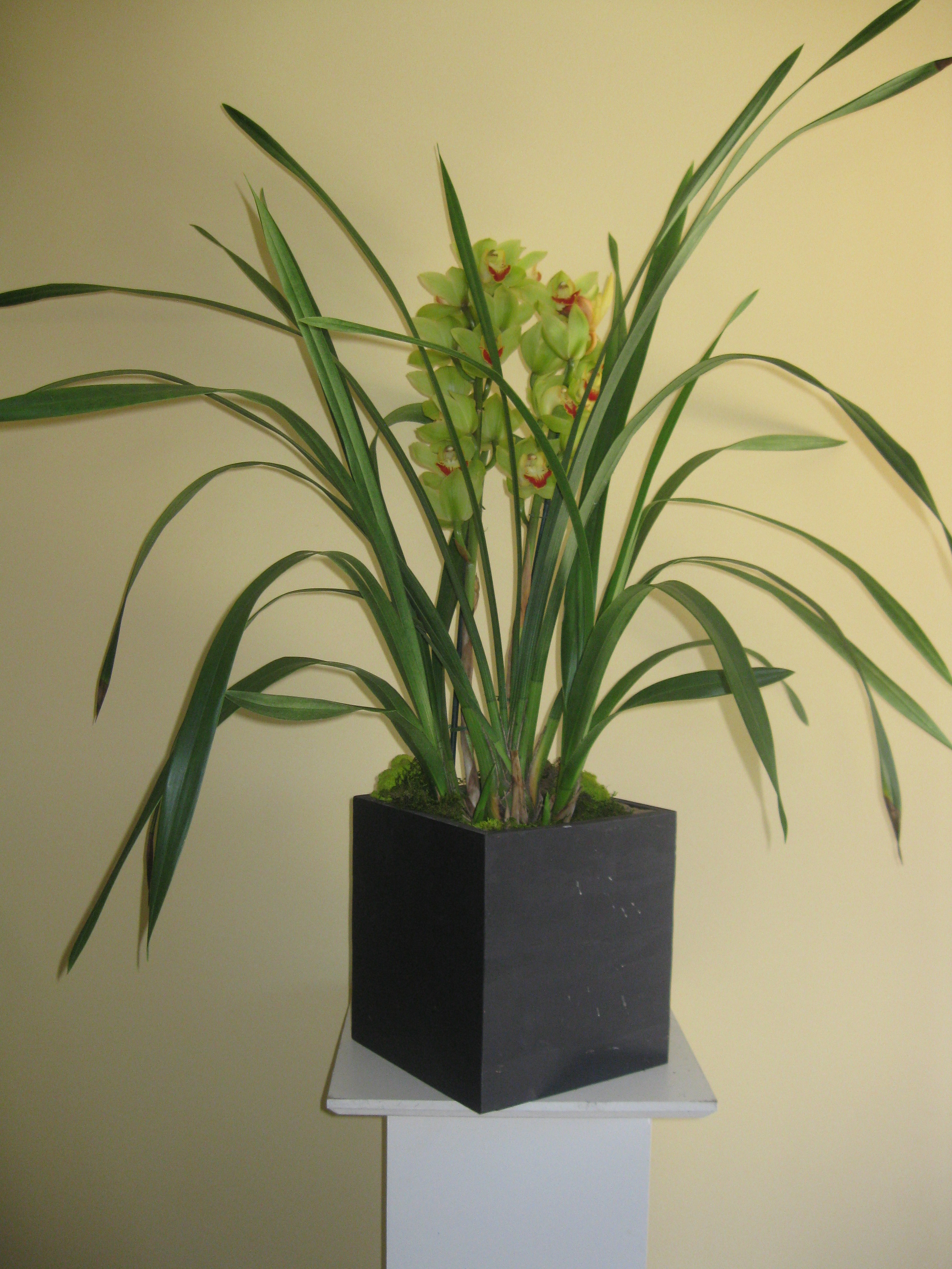 wood boxes vase.jpg
