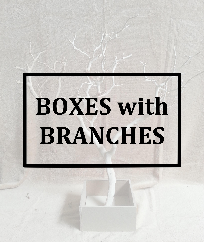 BRANCH BOX BUTTON.jpg