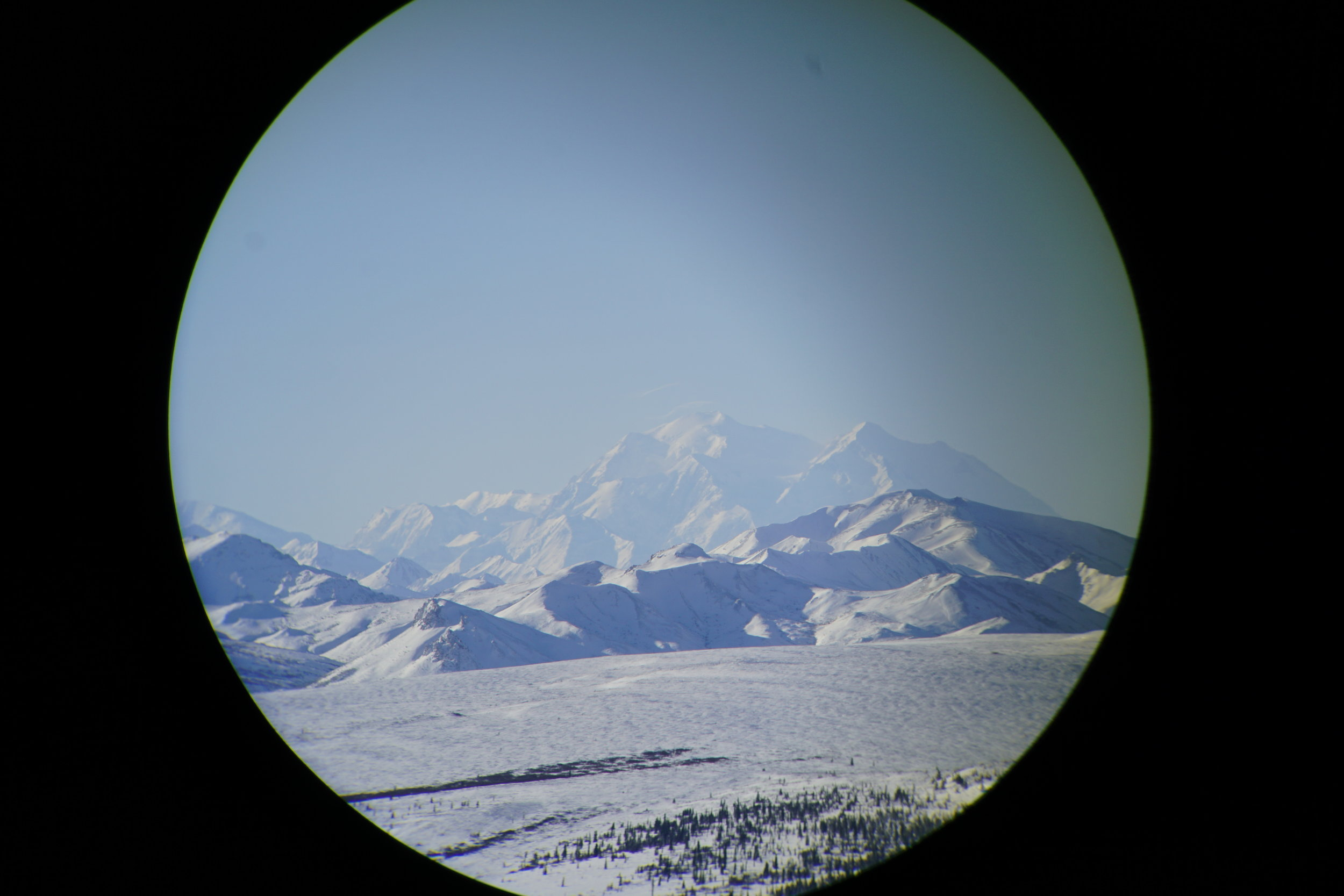 I was a  Denali National Park & Preserve  Artist-in-Residence in February 2018. More images and finished artwork will be posted soon!