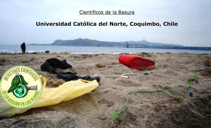 International sampling of litter on the beach — results...