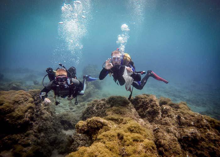 Ocean   PLASTIC UNDERWORLD   a divers' display   Read more