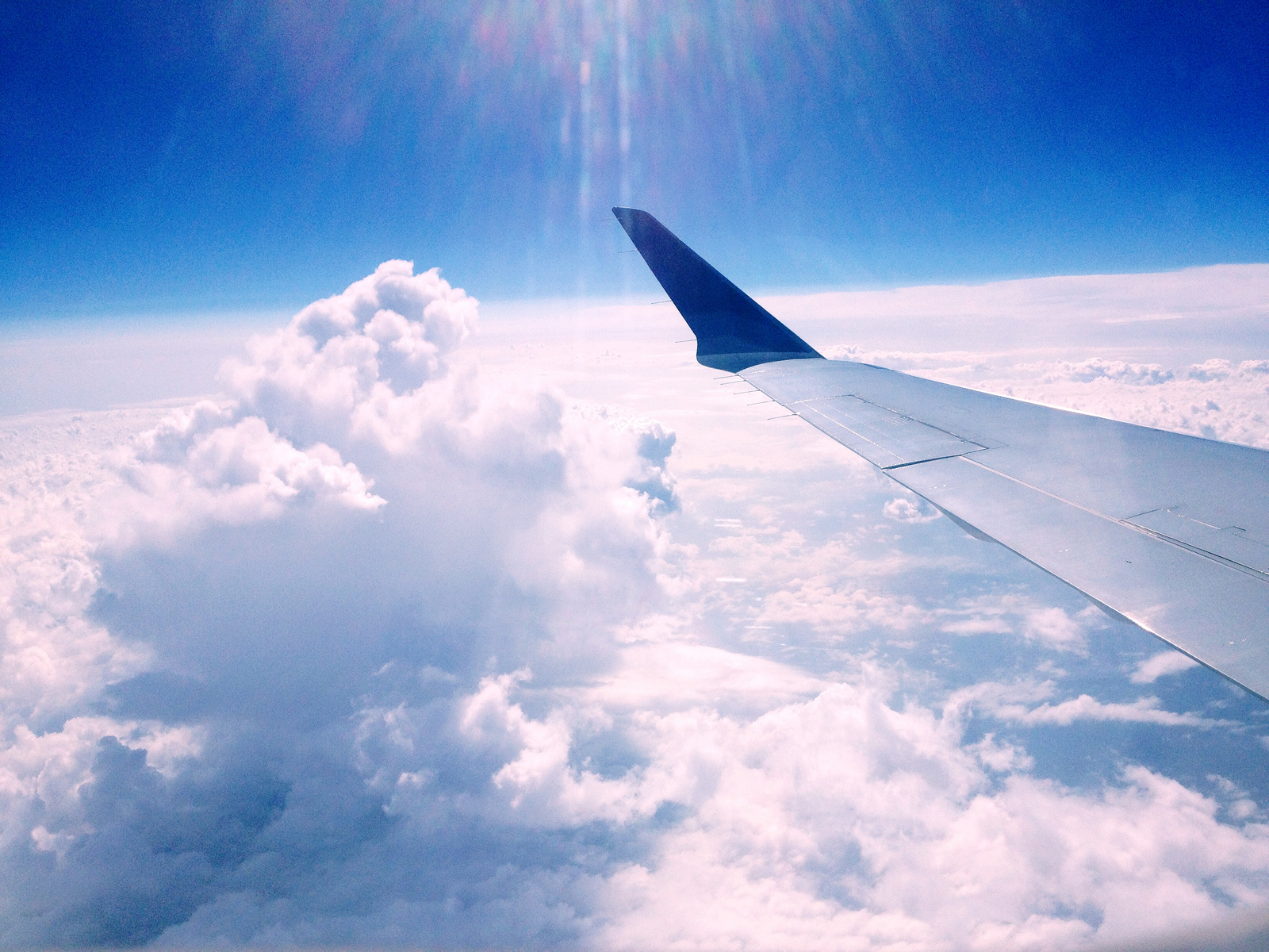 Business   ECO-FRIENDLY SKIES   are they possible?   Read more