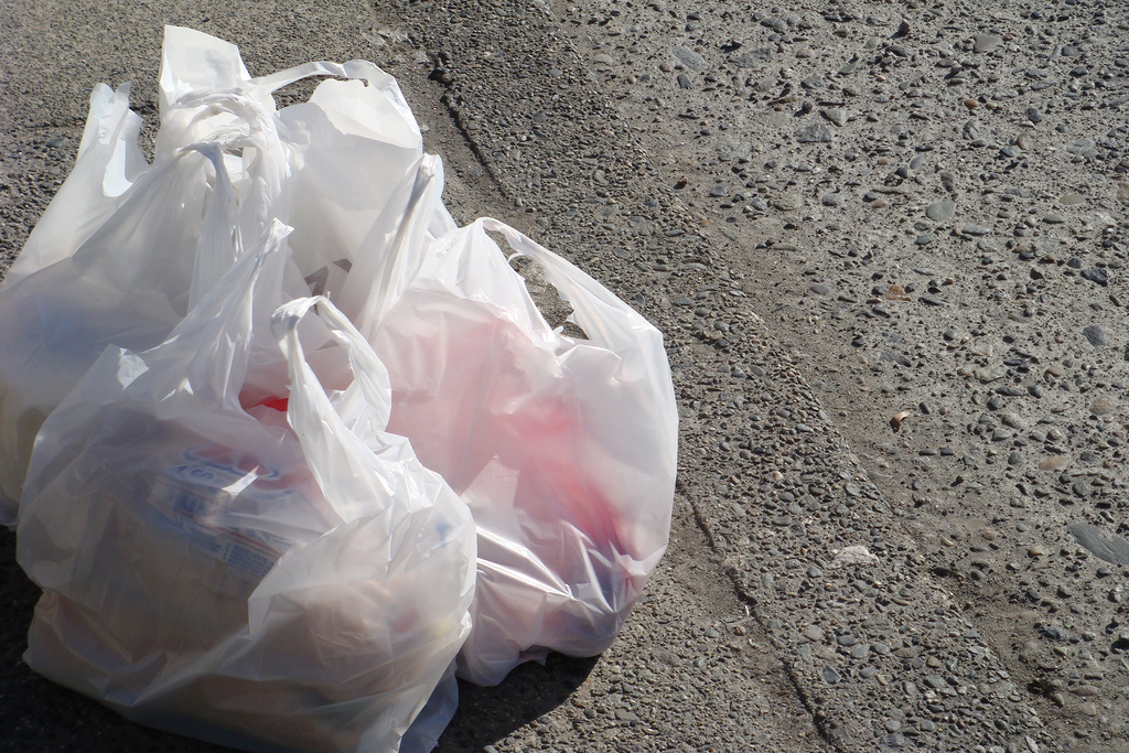 Policy   START A BAG BAN   in your town   Read more