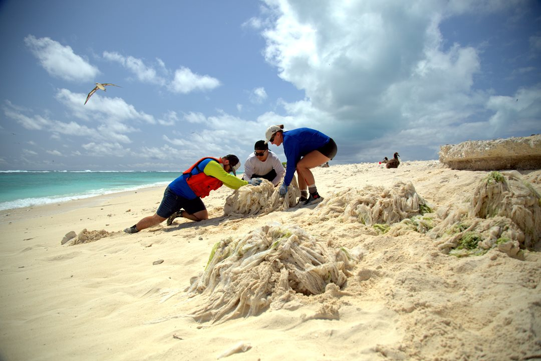 Ocean   MIDWAY THROUGH   atoll cleanup project   Read more
