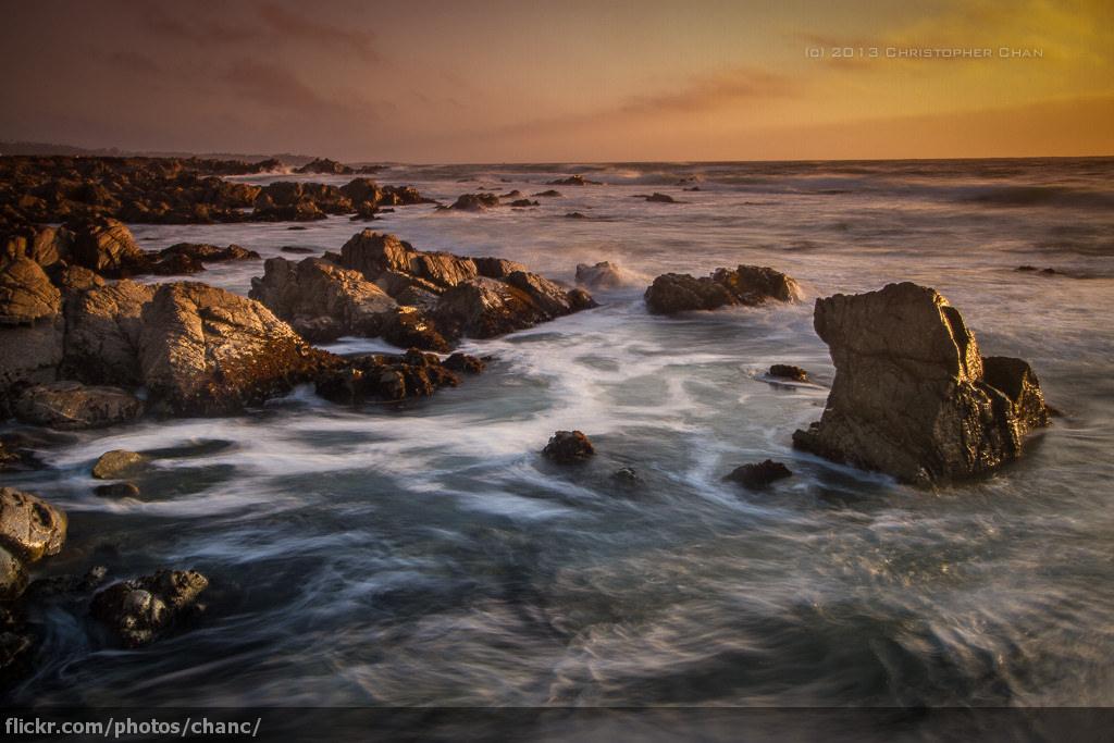 Ocean   MARINE PROTECTION   a worldwide effort   Read more