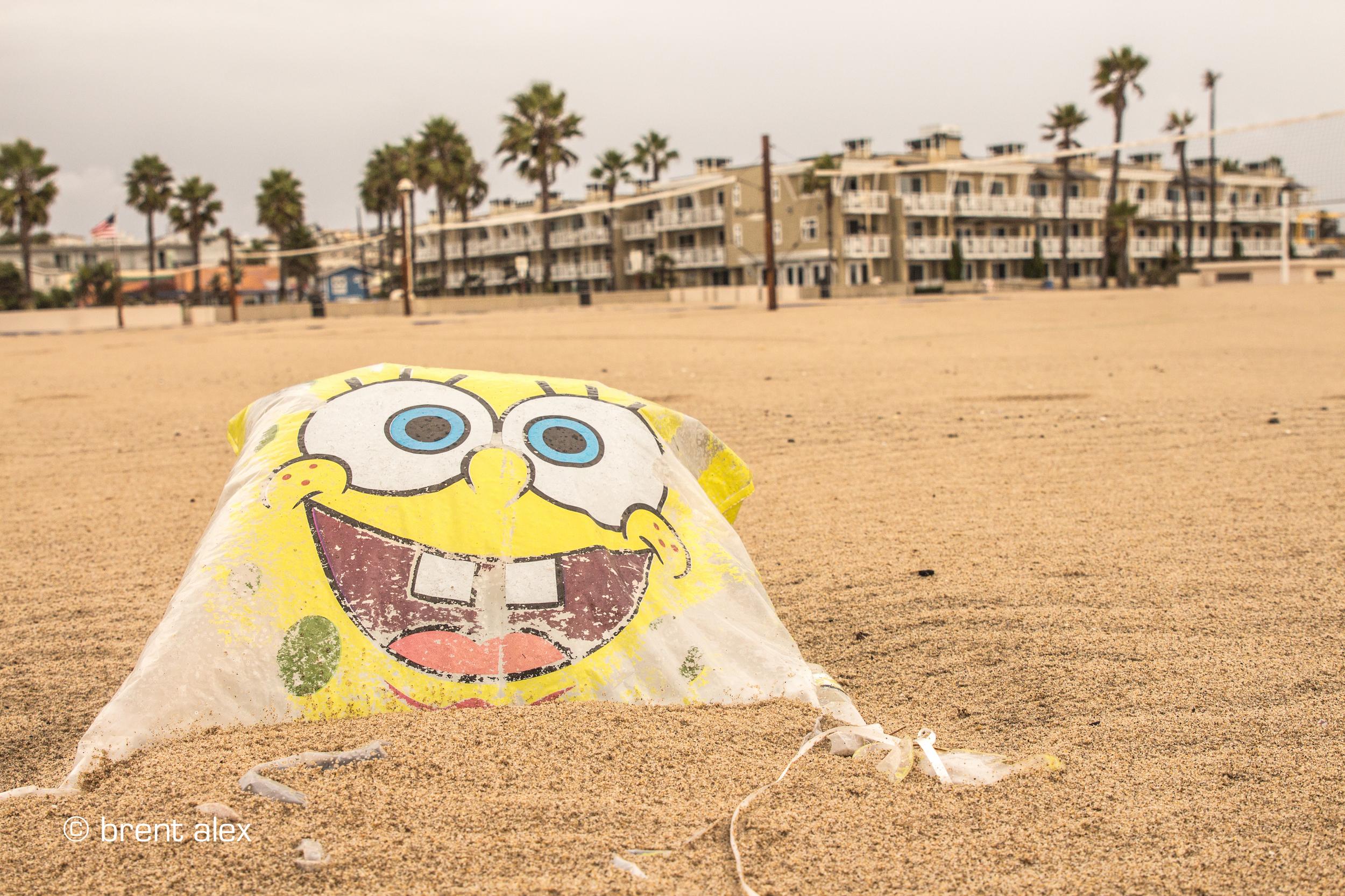 sponge+bob+square+trash-2.jpg
