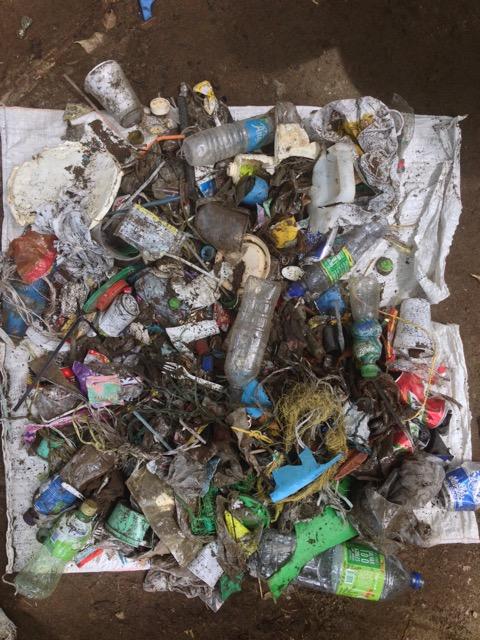 One-hour beach cleanup inside Marine National Park