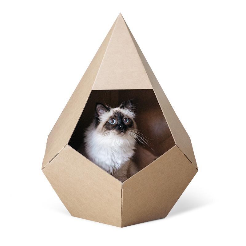 Boba & Vespa Cat .jpg