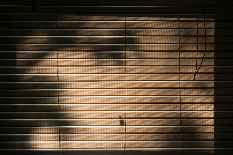 OH_Moth-Window_2013.jpg