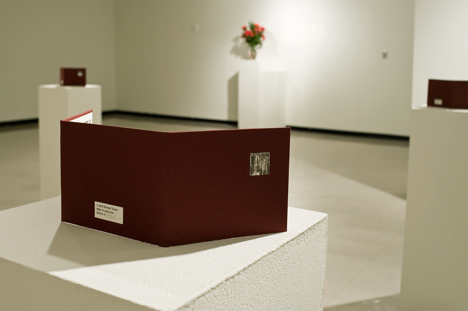 Installation view from  reminiscence  at Harry Wood Gallery in Tempe, Arizona.