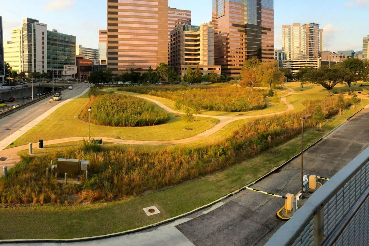 "MD Anderson Prairie - A ""pocket prairie"" in Houston's world famous Texas Medical Center a project of Katy Prairie Conservancy and MD Anderson Cancer Center   Photo by Jaime González"