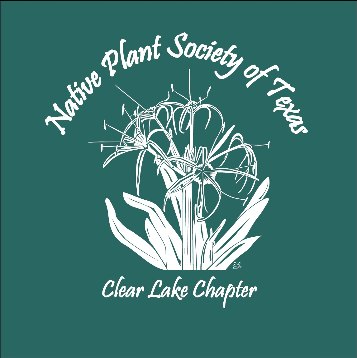 000 Native Plant Society of Texas - Clear Lake Chapter - RPFP BOLD Teal MAH.png