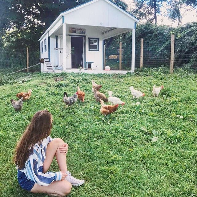 [EVENT - SEPTEMBER 17] Founded by Rima Farah in 2017, @happyfarmanimalrescue is an animal sanctuary, where homeless and exploited farm animals find healing and a lifelong retreat.🤕🤒 They welcome visitors, families, children and students, allowing them to connect with the victims of industrial farming thus creating awareness and encouraging compassion. 🐶🐱🐰🐣Happy Farm's goal is to allow a special encounter between people and farm animals.  Every week they receive dozens of calls and emails about animals in need and their land could welcome more but they need your help to build new facilities ❤️, put up new fences and pay for vet bills... Join us for an amazing evening supporting Happy Farm, 💵learn more about its work and mission, get to know its amazing residents 🐴🦋🐔and 🤝 meet with its incredibly inspiring team and founder.  TICKETS Attendees will enjoy great food and drinks 🍏🍐🍒🥗🍪and everyone will go home with an amazing goodie bag!  Can not make it on that date ? 📅You can also support Rima's work by donating:  www.myhappyfarm.org