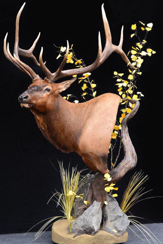 elk-black.jpg