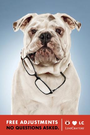 LensCrafter-LC-Free-Adjustments-Dog