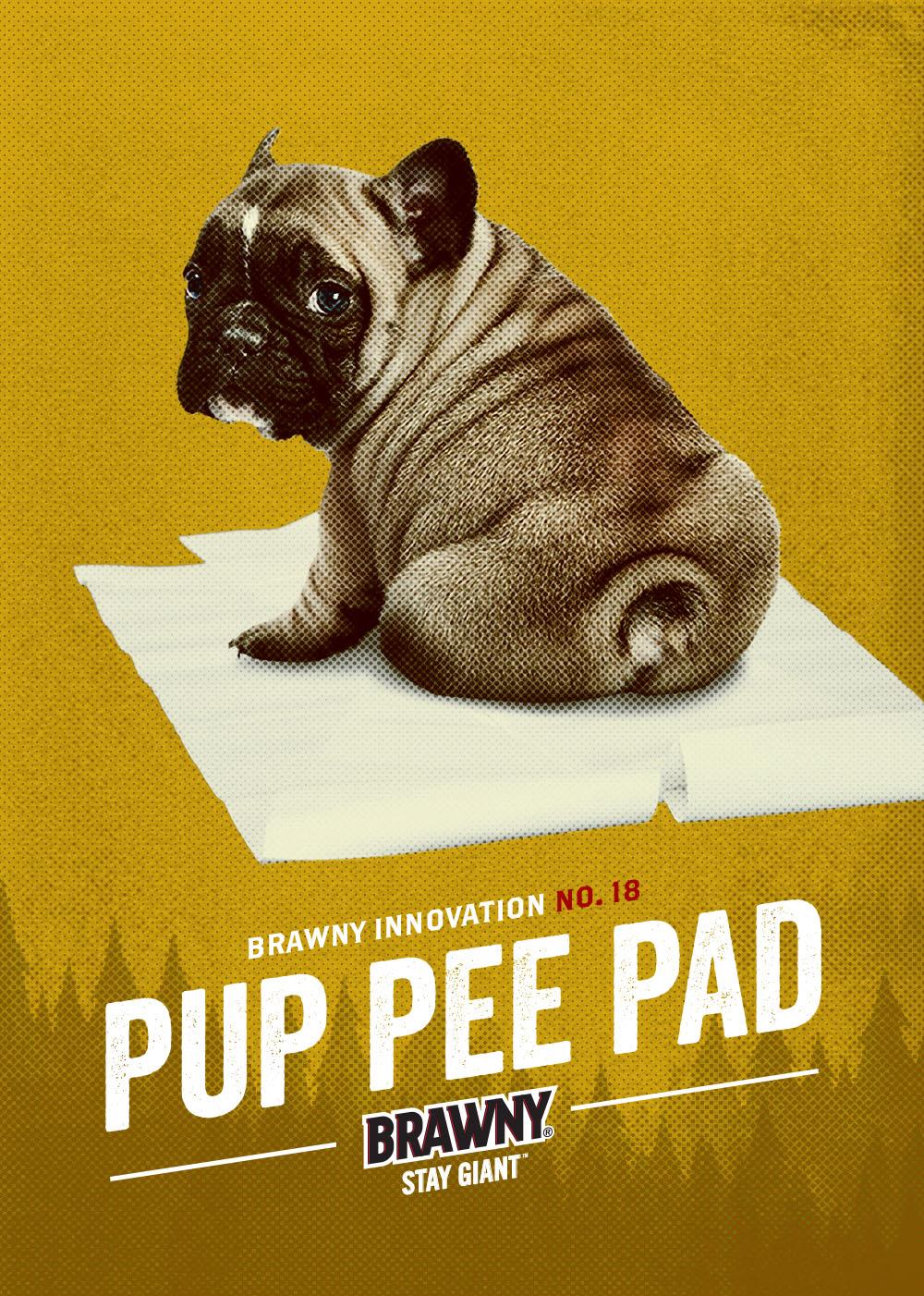 Brawny_Brawny_Innovation_Pup_Pee_Pad
