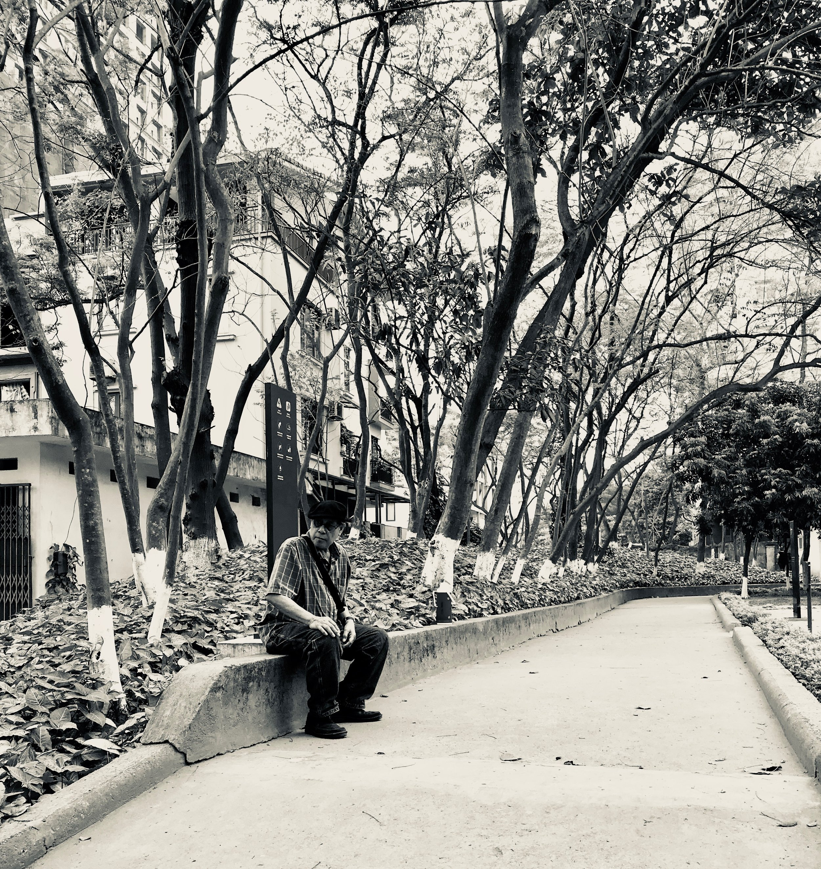 David Hanoi