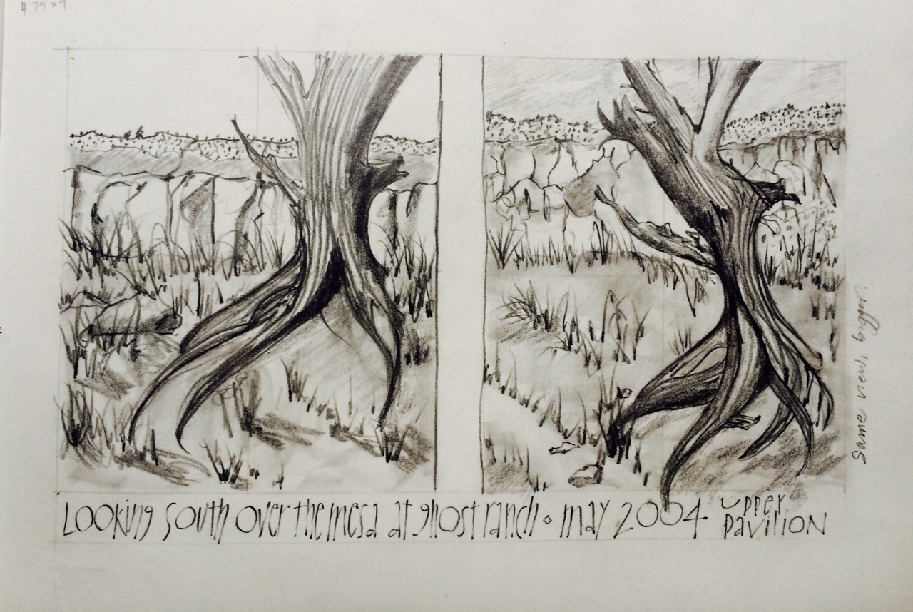 View out of our workshop at Ghost Ranch, New Mexico, L Doctor Sketchbook